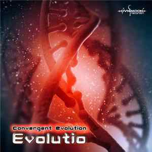 Convergent Evolution - Evolutio